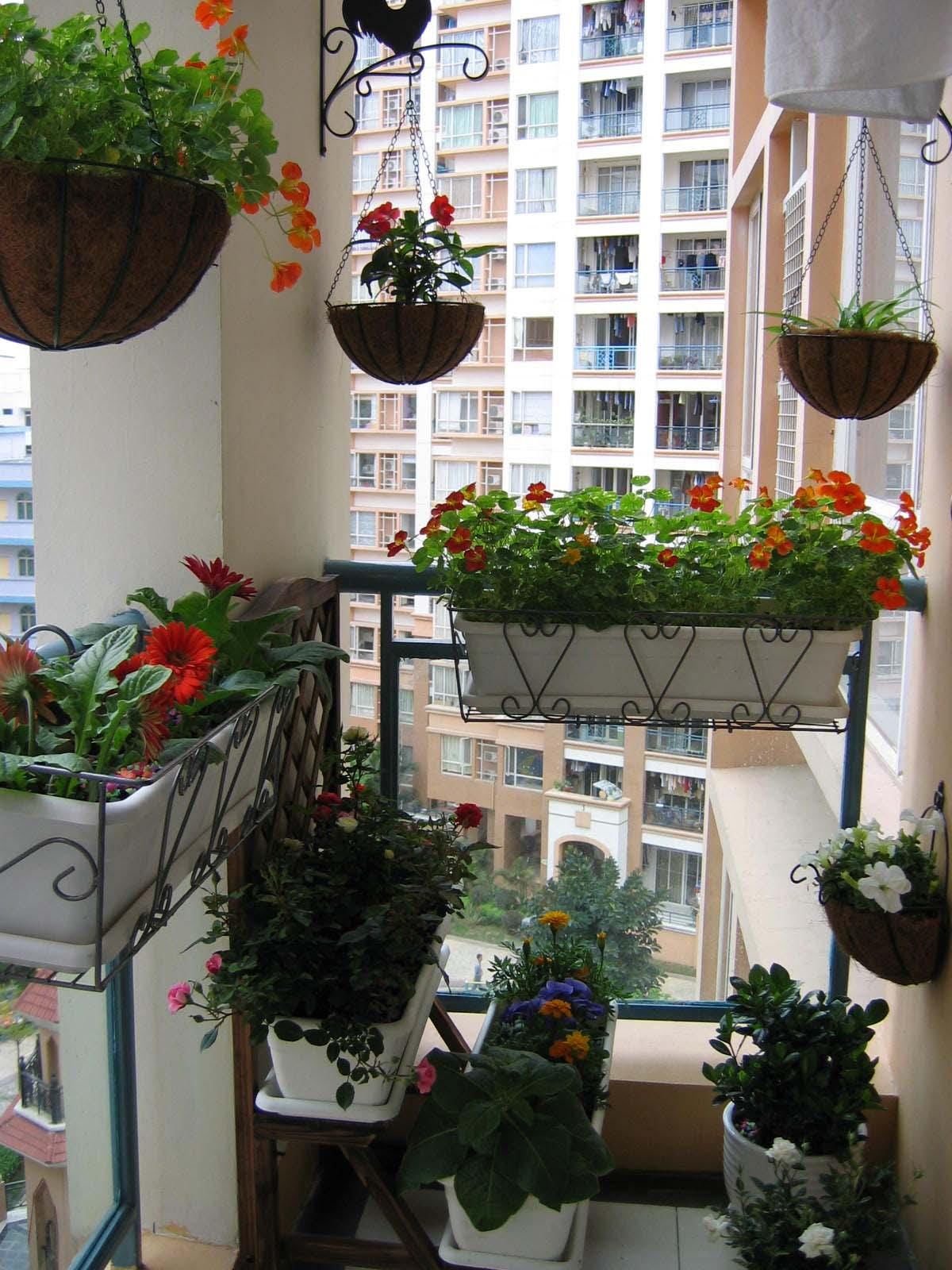 小阳台小花园效果图