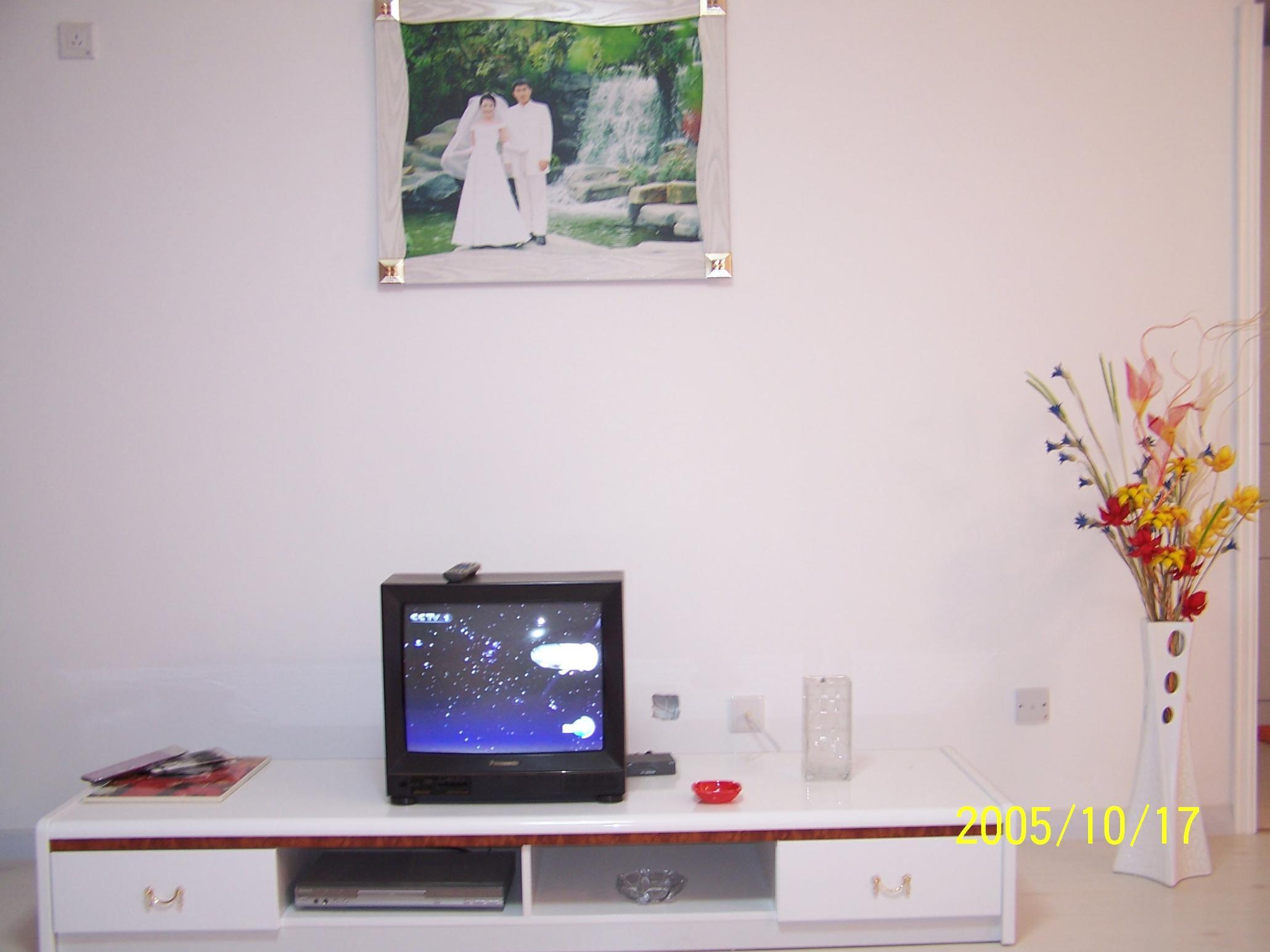 客厅2:香河买的烤漆电视柜,自己设计的电视背景墙,从昆明带回的干花