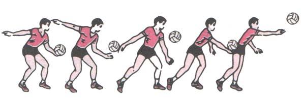 一、正面下手发球   正面下手发球是正面对网,手臂由后下方向前摆动,在腹前将球击入对方场区的一种发球方法。下手发球在高水平队比赛中已不多见,但其动作简单,容易掌握,准确性高的特点,使它不仅是初学者常用的发球方法,也是教练员训练时抛、供球的一种手段。   1.