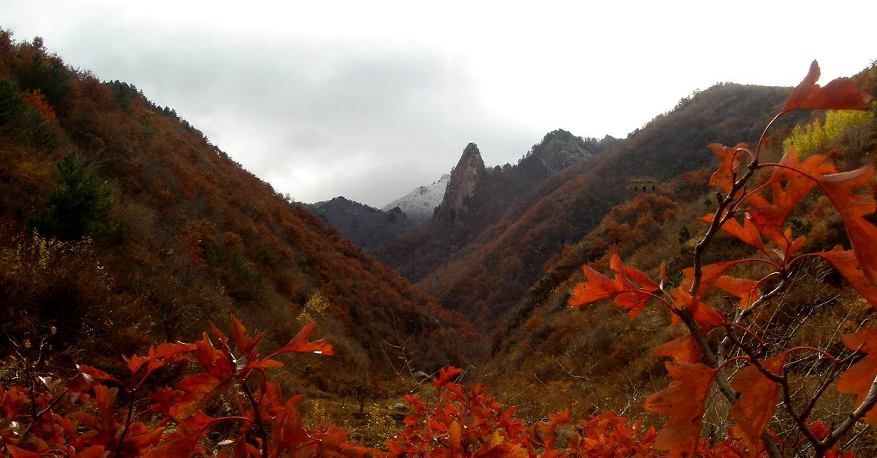 秋风秋果秋色,壁炉火炕篝火 雾灵溪谷 秋游赏红叶正当