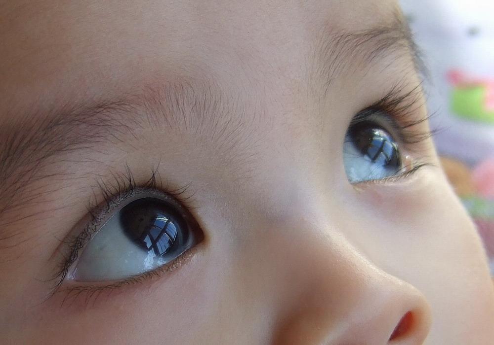 我儿子漂亮的大眼睛